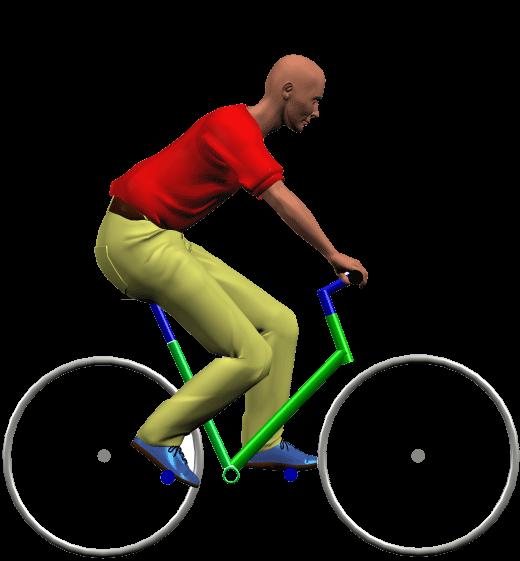 Position Sport